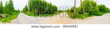 Panorama Of Forest And Roads
