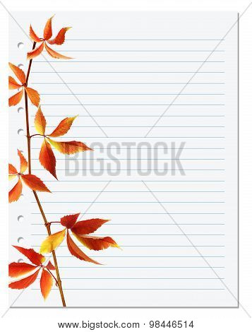 Exercise Book With Autumnal Virginia Creeper Twig
