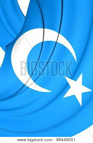 Flag Of East Turkestan