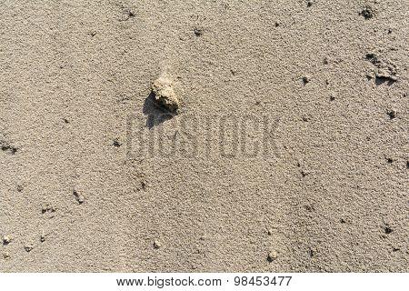 Sand - Sedimentary Rock