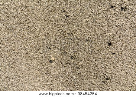 Sand Is A Loose Sedimentary Rock