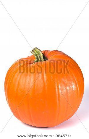 Pumpkin Vertically
