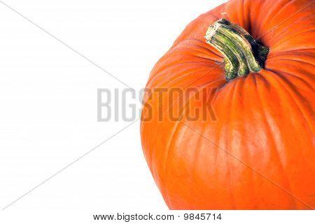 Pumpkin Text Area V1
