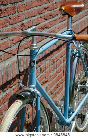Luxury Fixed-gear Bike