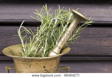 Rosemary in a mortar