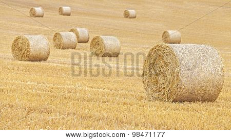Hay Bales On Harvested Field, Shallow Depth Of Field.