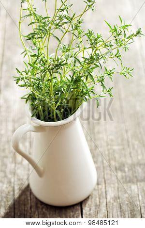 Fresh savory bunch in vase