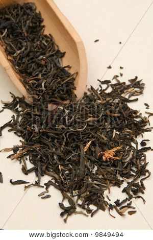 Jasmin Xiang Hao Chinese Tea