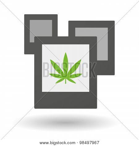 Isolated Group Of Photos With A Marijuana Leaf