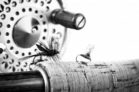 pic of fly rod  - Black and White Close up of fly fishing rod and reel on white background - JPG
