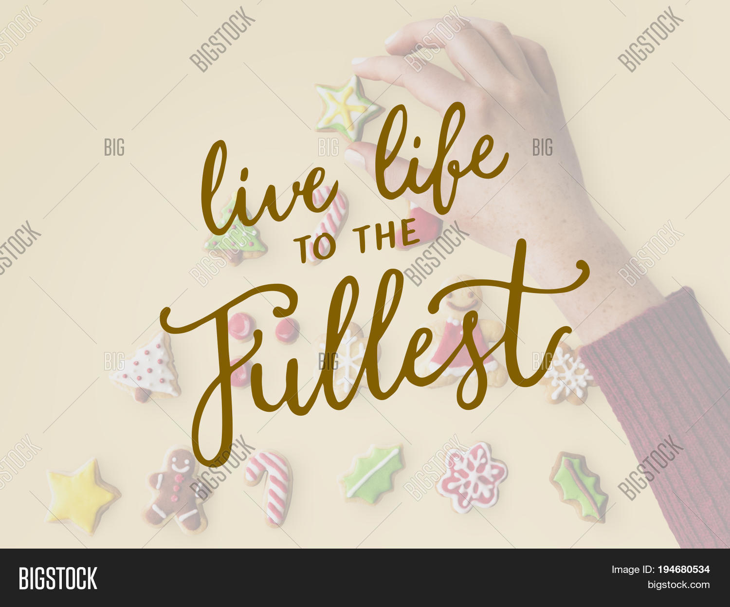 Live Life To The Fullest Quotes Live Life Fullest Quote Message Image & Photo  Bigstock