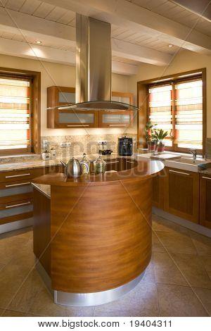 Interior details of luxurious modern kitchen in home.