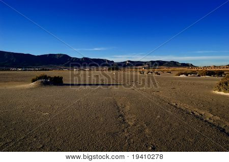 Climate change, global warming effect: dry salt lake - track tire - Laguna de Salinas (Spain)