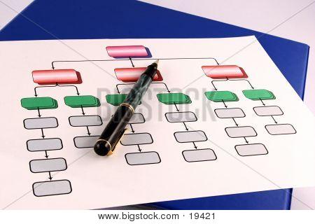 Organization Chart 3
