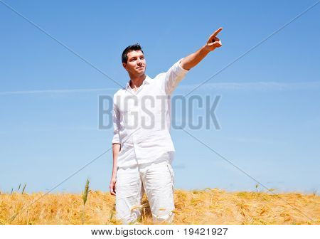 Golden wheat field standing man with hands up showing the way forward as symbol concept for a better business career