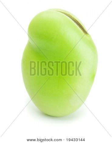 Bean standing, isolated on white. High magnification.
