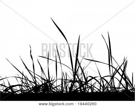 vector grass silhouette