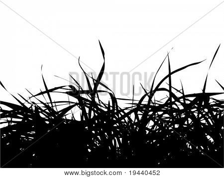 bunch of grass vector silhouette