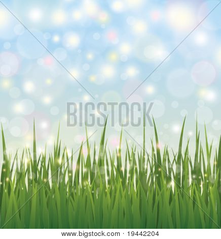 Grass with orbs