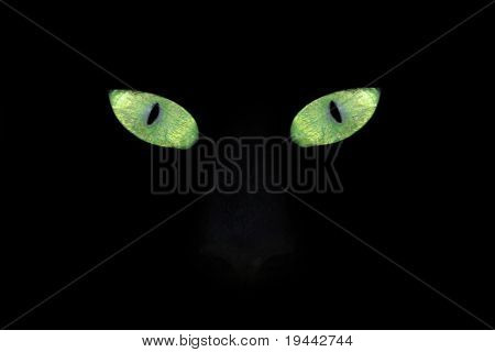 Green yellow Cat eyes