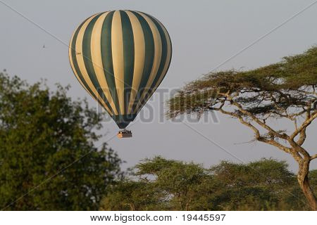 Ballon in serengeti in africa