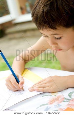 Young Boy Engross Doing His Homework