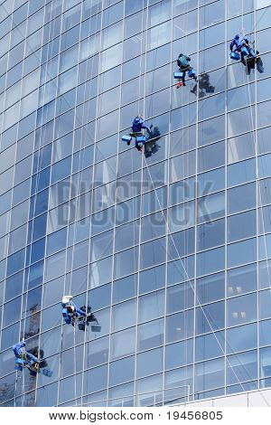Five workers washing windows in a modern office building