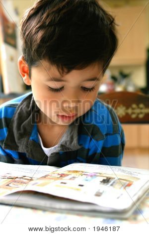 Young Boy Reading A Storybook A Home Setting