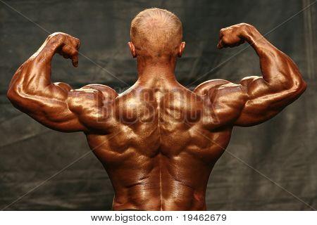 Bíceps posterior de culturista