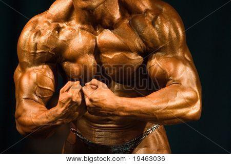 Bodybuilder Most Muscular Pose
