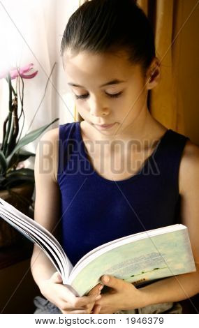 Young Girl Enjoying A Book By The Window
