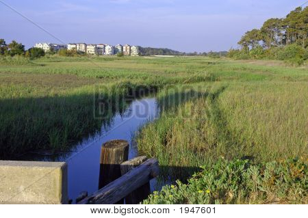 Marsh-Häuser