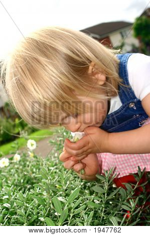 Toddler Girl Smelling A Flower In The Park