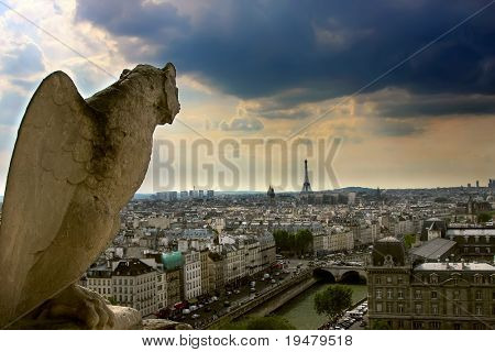 View on Paris from Notre Dame Cathedral, Parice, France