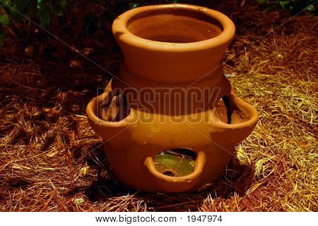 Clay Pot In The Pinestraw