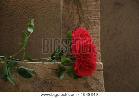 Red Roses On A Wooden Ladder
