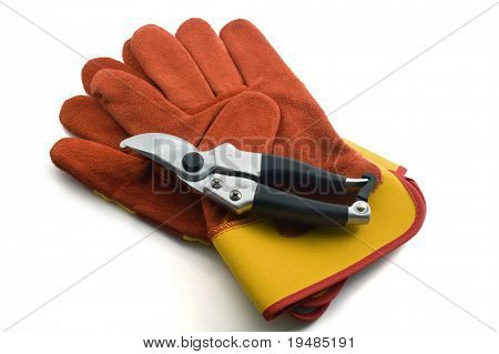 pruning shears and garden gloves isolated on white