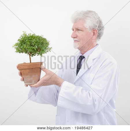 senior scientist holding small potted tree