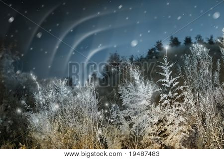 Manipulated winter scene featuring Northern Lights (Aurora Borealis), blurred snow, and twinkling lights