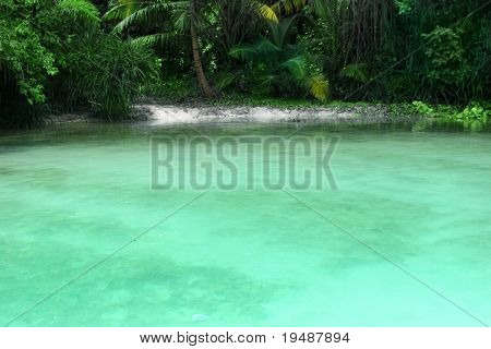 View of a secluded lagoon with tropical jungle and clear turquoise green still waters