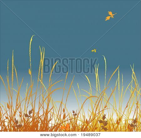 Autumn background. A grass and falling foliage. Vector