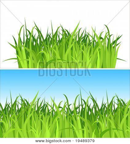 dos fondos de la hierba / vector / contiene las capas separadas