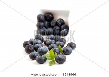 Sweet blueberries