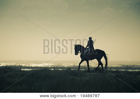 A Rider Silhouette on Horseback / split toned / retro style