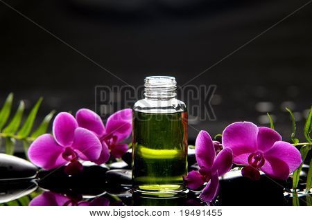 Spa still life essential oil and fern with orchid