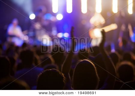 Fan cheering at live concert, some motion blur at arms, soft focus.