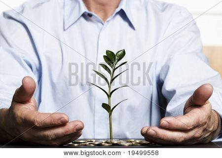 Businessman in blue shirt protecting with hands green plant growing out of coins pile symbolizing safe growth of financial wealth.