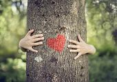 Tree hugging, little boy giving a tree a hug with red heart concept for love nature poster