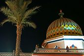 image of middle eastern culture  - The Arabian architecture and palm in night time - JPG
