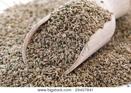 Ajowan Seed